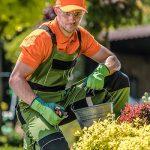 service à la personne, jardinage, tonte pelouse, déboussaillage, entretien jardin, ramassage feuilles, désherbage, taille des haies, taille des arbres